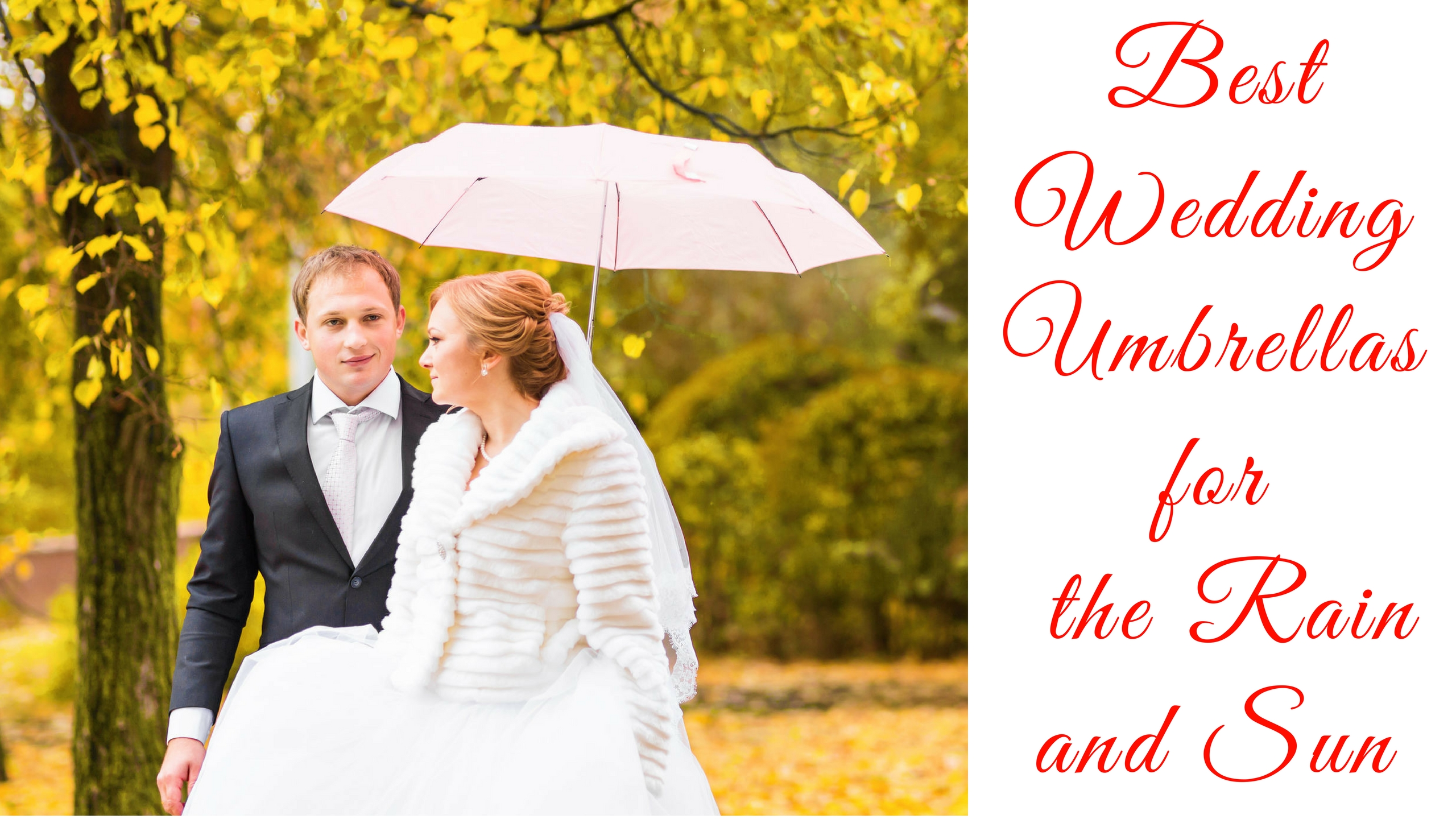 best-wedding-umbrellas-for-the-rain-and-sun