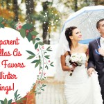Transparent Umbrellas As Wedding Favors For Winter Weddings