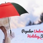 A Few Popular Umbrellas For Your Holiday Season  Marketing Mix