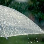 Popular Printed Umbrellas For The Rainy Season